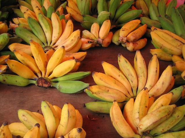 Bananes diet thique - Fruit de saison decembre ...